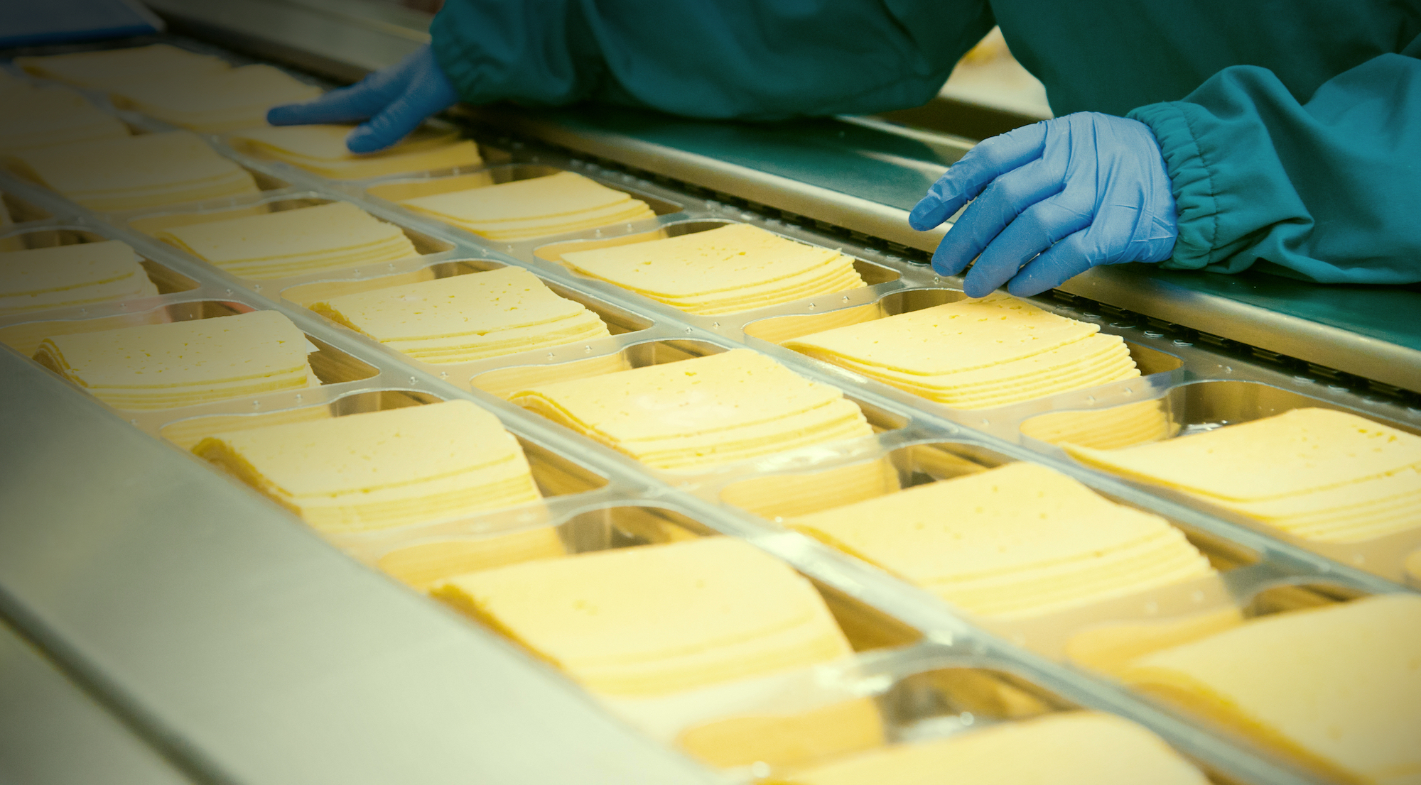 Detect Safety Hazards from Cheese Products